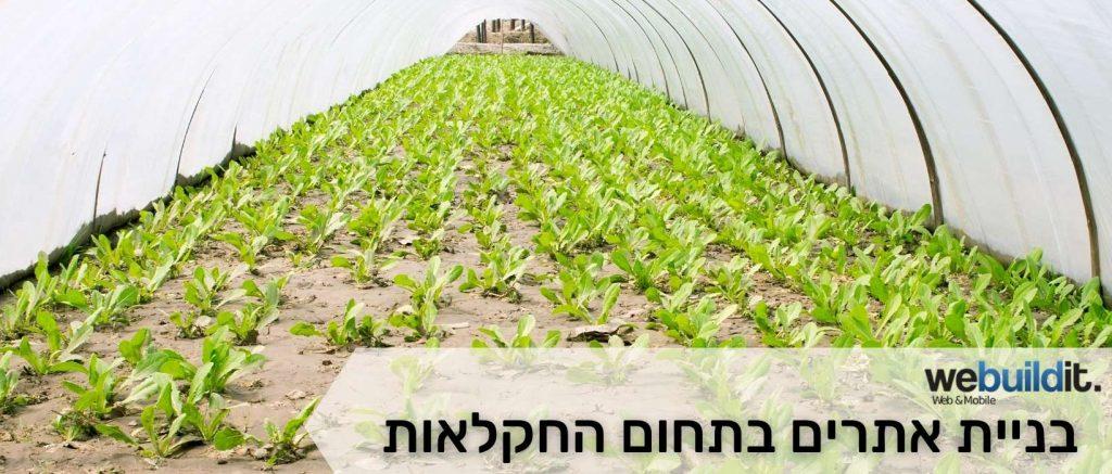 בניית אתרים בתחום החקלאות