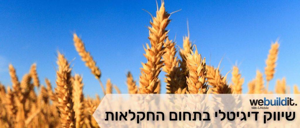 שיווק דיגיטלי בתחום החקלאות